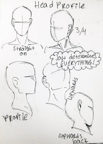 DIY: How to draw head profiles