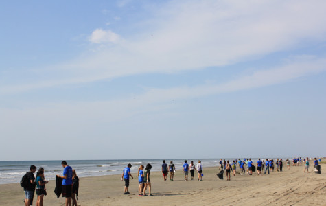 Interact In Action – Students Adopt a Beach
